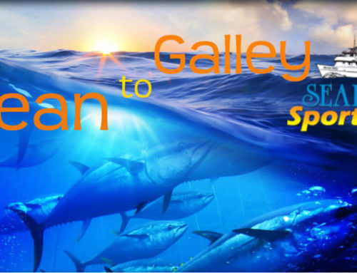 Ocean to Galley (Peppered Bluefin)