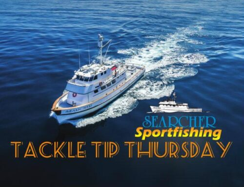 Tackle Tip Thursday Vol. 118 (Light Line Fishing)