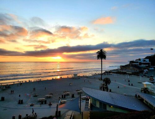 What to Do in Encinitas After A Fishing Trip